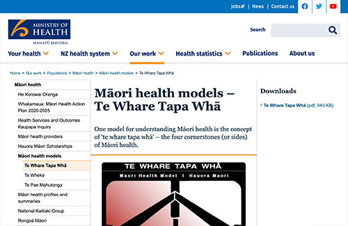 Māori Health Models